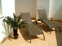 Private Sun Loungers waiting for you