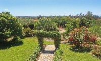 The view to the sea through the garden