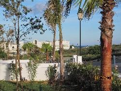 garden/terrace view