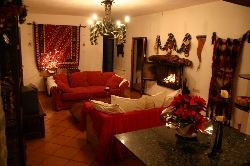 Lounge with crackling fire, Xmas 2007