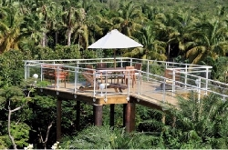 Gazebo and Tropical Gardens