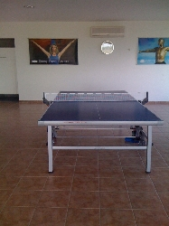 Anyone for Ping Pong?