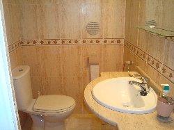 Ground  Floor Vanity Sink And Toilet