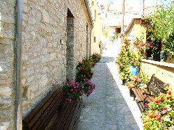 Pebbled floral street outside Romios