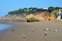 Blue flag beach in Olhos D'Agua