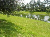 View of pond behind villa