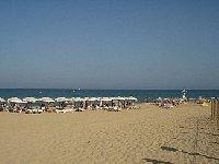 Local Blue Flag Beach