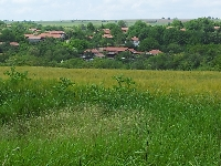 picture 4 of scenery/views of village