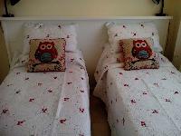 Owl Twin
