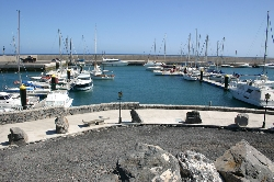 Amarilla Marina