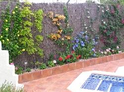 Colourful private gardens