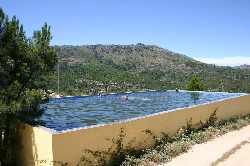 or swimming in the large waterbasin