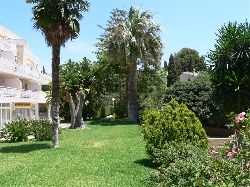 Gardens around apartment