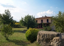 Villa with veranda,Garden,cherry trees