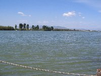 The Ebro Delta ( 40 kms )