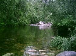 Rio/River Mondego