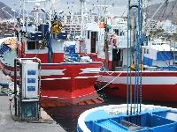 Los Cristianos harbour 10/15 min
