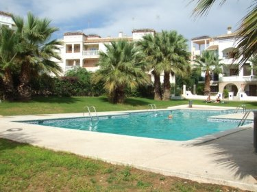 Holiday apartment to rent in villamartin torrevieja costa blanca spain id 6466 for Swimming pool repairs costa blanca
